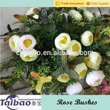 5 filiais atacado espargos samambaia com silk rose bud arbustos