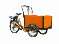 CE approved cheap electric tricycle/low price electric trike/3 wheel bicycle/super cargo bike