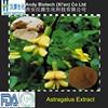 100% Natural High Quality Polysaccharides 50% Astragalus Root Extract Powder