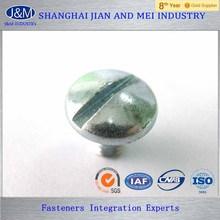 Carbon steel ISO 1580 Slotted pan head screws