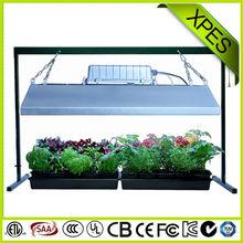 importazione coltiva la luce migliore per la crescita e la fioritura di alta qualità