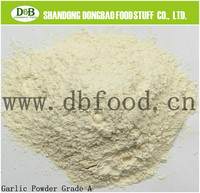 Pure & Nature garlic powder 80-100 mesh