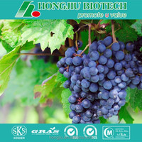 Organic Grape Seed Extract/Grape Seed Extract Powder