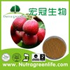 Large stock HPLC Hawthorne Berry Extract supplier