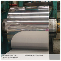 Factory Price Stainless Steel Coils/SS Strips 201