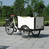 3 wheel family tricycle