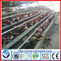 alibaba china supplier Layer chick cage for chicken coop /Battery Type Breeding Chicken Cage