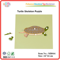 chinese montessori materials toys wooden turtle skeleton puzzle