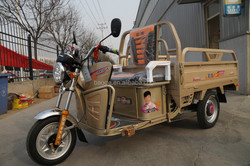 Electric tricycle with three wheel for cargo and passenger seat