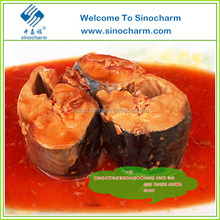 Exporting Good Canned Mackerel Fish
