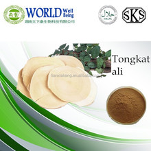 Free sample Tongkat Ali herbal extract /Tongkat ali capsules