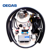 OEM CNG conversion kit / Natural gas system / cng fuel gas system