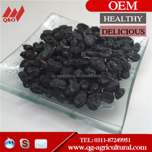 Sultana Black raisins price Black raisin