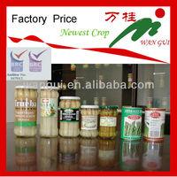 Fresh canned white asparagus spear in jar