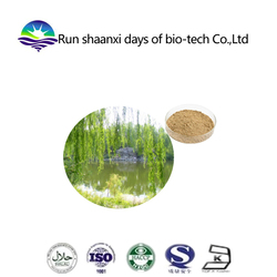 ISO and kosher Factory supply White willow extract 15-98% Salicin