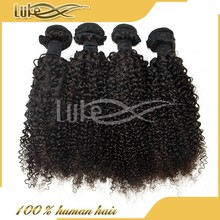 Cheap wholesale pure Indian human hair afro kinky curly braiding hair x-pression braid hair