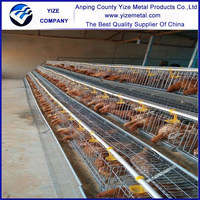 chicken layer house/ poultry chicken farm/battery chicken shed for sale