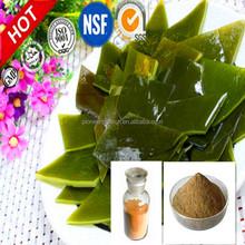 Hot selling nature kelp extract fucoxanthin pure fucoxanthin seaweed extract