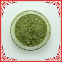 G006-8 Best Sell 50 Boxes Factory Supply Olive Green Glitter Powder Nails