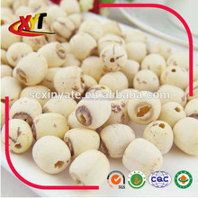 white dried Lotus Seed