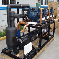 Outdoor Bitzer compressor parallel condensing unit