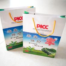 High Quality Shopping Paper Bag Packing bag
