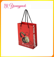 2016 Wholesale high quality different types of paper bags
