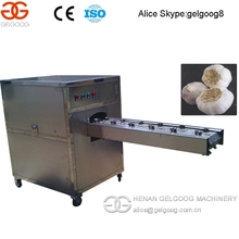 Industriales homologados CE acero inoxidable ajo Root Concavely cortador de China