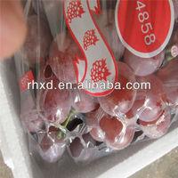 Seedless Grape Variety XINJIANG FRESH grapes