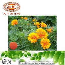 Best Chinese Herb Marigold Flowers Lutein Extract Powder/ Lutein Powder 50%/ Marigold Extract Powder Factory