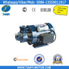 Middle East Small 110 Volt Water Pump
