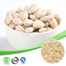 Hot sale Perennial bean extract/Phaseoline 2%/White Kidney Bean Extract /Treat Diabete mellitus plant extract