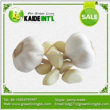 2015 Crop White Garlic Producers