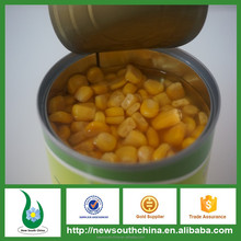 NON GMO canned sweet corn with best quality