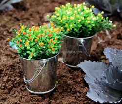 Mini metal tin pots galvanized plant pots