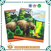 High Quality China Factory Handmade Cardboard Children Book