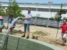 Solar panels, UPS, Battery, pumps low power consumpstion.