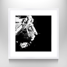 Animal Poster Wall Art,New Designs Beauty and Lion Photograph Print on Matte Paper,Mural Wall Decal for Home Decor