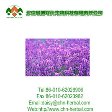 Factory supply 100% natural Witch hazel extract,Soluble in water Witch Hazel Extract