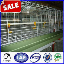 Anping Hot Supply best sale chicken egg layer cages in south africa
