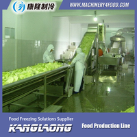 Large Capacity frozen french fries potato machinery