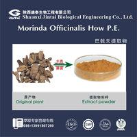 medicinal morinda root extract/Bacopin Extract