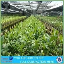 100% Virgin HDPE Knitted UV Green, Black Agricultural Shade Net, Agricultural Sunshade Net