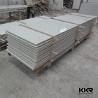 Projetado lajes de mármore resina painel do chuveiro