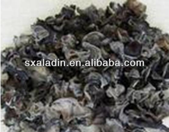 Yenilebilir siyah mantar mantar kuru/mantarı
