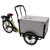 Electric Food Tricycle with cover