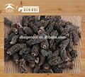 de hongos secos morel para la venta hecha en china