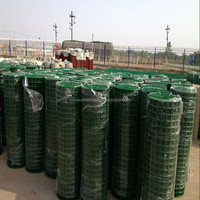 High quality 1x1 pvc coated welded wire mesh( factory , ISO 9001 certificate )