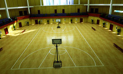Made in china indoor sports floor for basketball 8MM