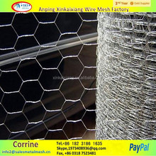 Widely Application Chicken Wire /Bird Cage Mesh /Galvanized Hexagonal Wire Netting( ISO9001)